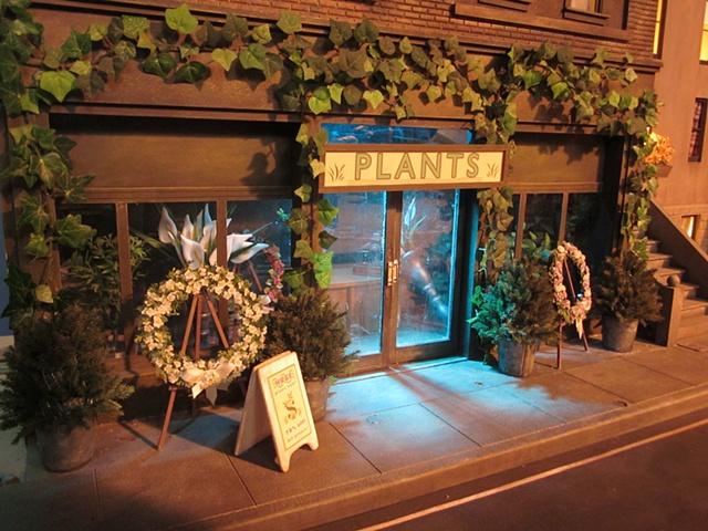 City Street Plant Shop