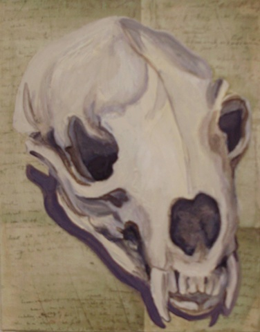 Mink Skull