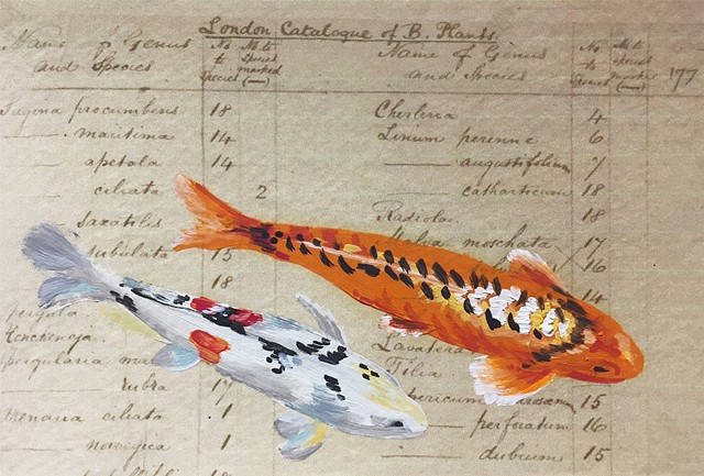 painted on paper- Darwin's List of Species