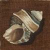 Triton Shell