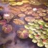 Aquatic Plants, New Orleans Sky