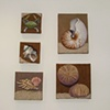 Shell paintings on linen