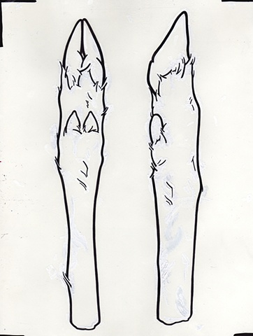 Untitled (Deer Hooves) Sharpie and Paint Marker on Paper 8.5 x 11 Inches  Preparatory Drawing
