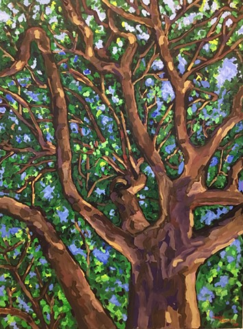 tree wellesley trail oak chelsea sebastian arbor painting blue green nature art color