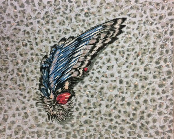 Swallow Wing: Catania, June (detail)