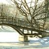 Tom Patterson Bridge in Winter, Stratford Ontario