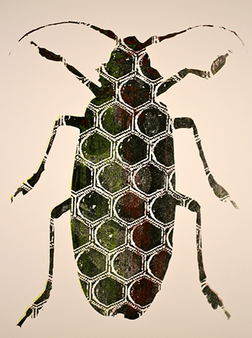 A black beetle overlayed with maroon and chartreuse