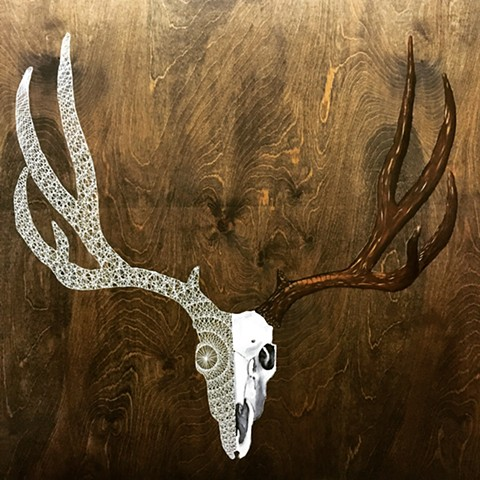 White tail deer skull oil painting combined with a geometric polytope on a wood background.