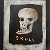 Skull Missing Link
