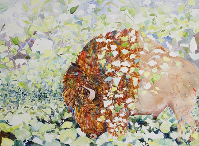 Watercolor painting on paper of an American Bison surrounded by knotweed, an invasive species by jenn houle