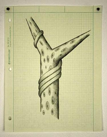 Tree, drawing, pencil