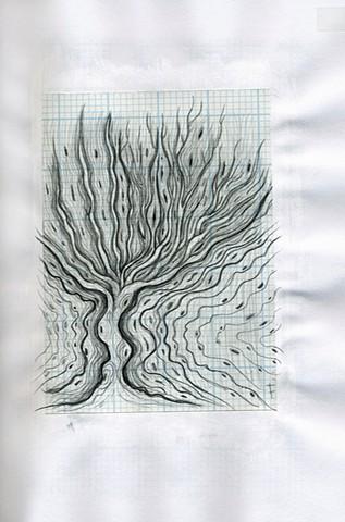 TREE: ReVerb