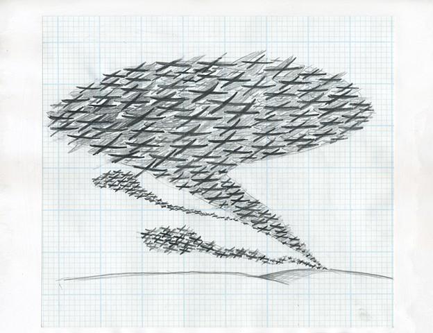 TREES: The Birds