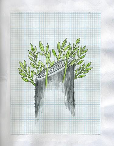 TREES: Crowned