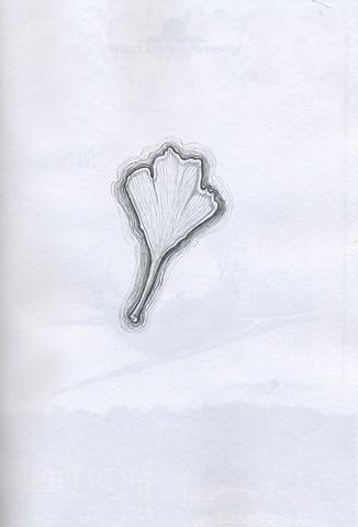 TREE: Ginko