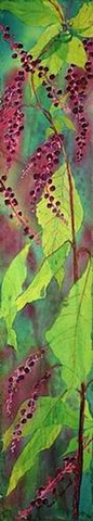 pokeberries, plants , translucent, lime green, magenta, watercolor