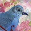 Bluebird's Blues