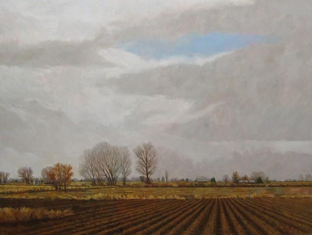 Sheridan's Farm
