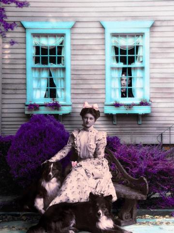 House on Lavender Street