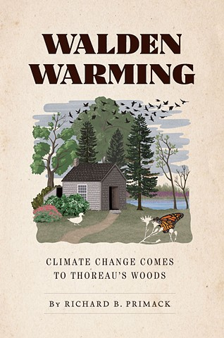 illustration of Thoreau's cabin after climate change