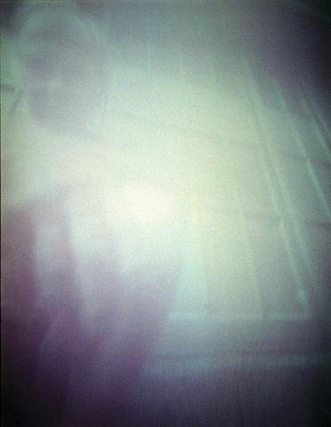 John Wood Rose petal slit camera 1988