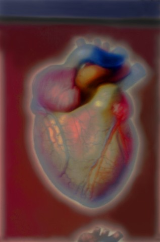 """The Heart 2014 zone plate photograph archival pigment print 13""""x20"""" from """"The Atlas of Human Anatomy"""" by J. M Bourgery and N. H. Jacob, 1832-1854"""