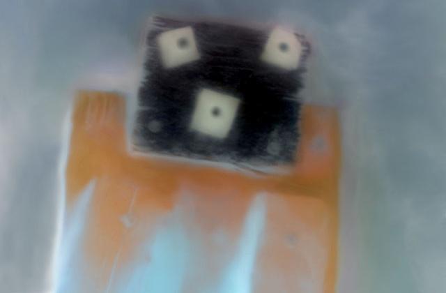 "Zephyr's Monkey 2011 zone plate photograph archival pigment print 20""x13"""