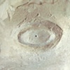 Detail of Pinhole in One Eye one pinhole plaster face camera 1987