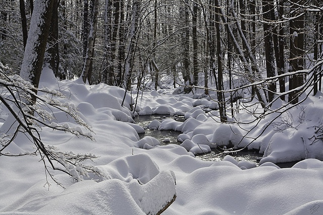 2011 Ice Catskill Mountain Winter Stream Snow