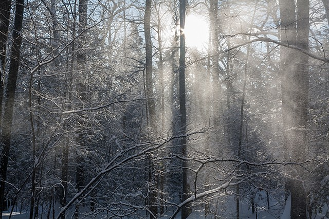 2011 Ice Catskill Mountain Winter Sunrise Snow