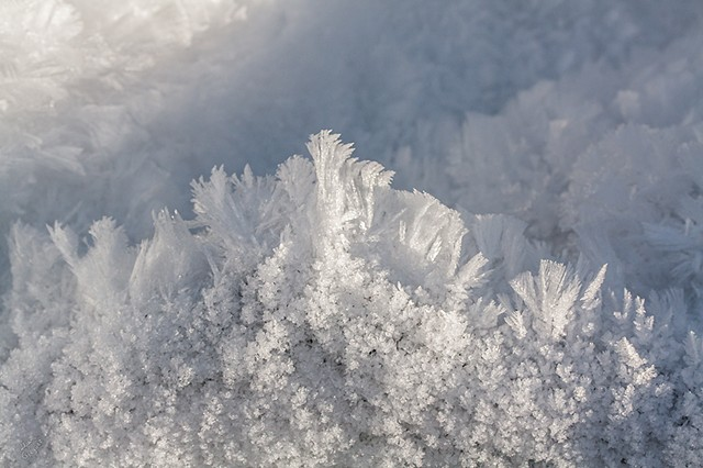 2010 Ice Catskill Mountain Winter Macro Photo