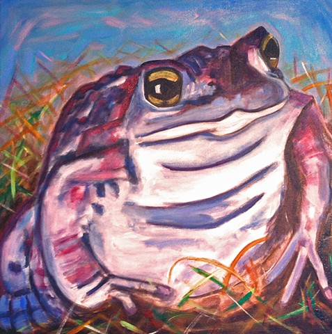 Don't you forget about me / Endangered Toad