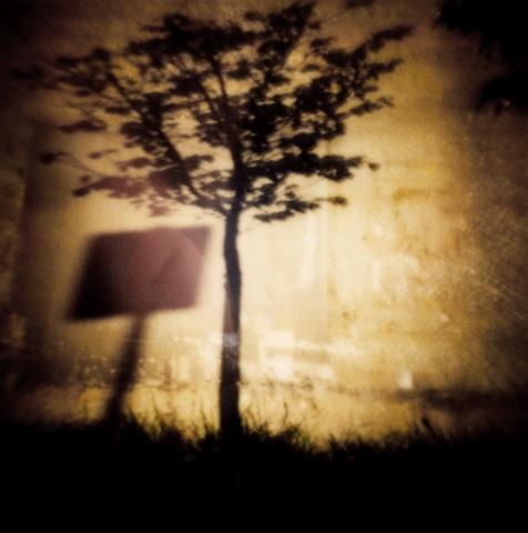 """Untitled """"Tree"""""""
