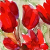 18 Red Tulips (Detail 1)
