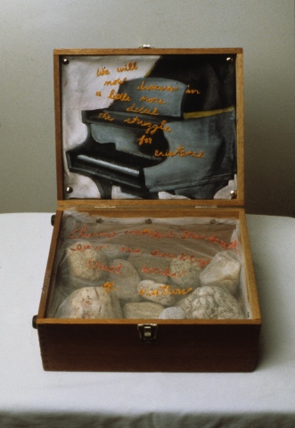 Darwin Boxed
