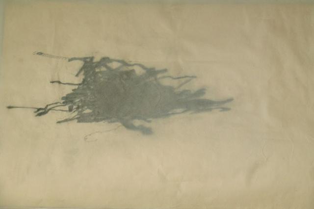 Shadow of the Typewriter Nest