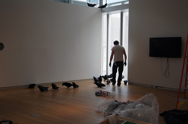 Installing Murder