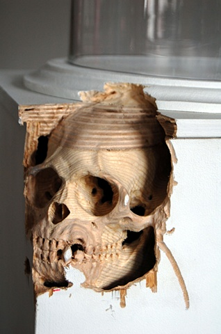 Maskull Lasserre Art Artist Portfolio Artwork Collection Sculpture Public Art Masquel Drawing Montreal Pierre Francois Ouellette Art Contemporain Macaque Monkey Skull Carving Plynth Bell Jar