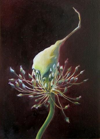 Single Garlic Flower