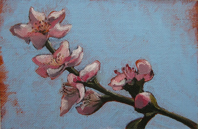 peach tree blossoms, original oil painting, flowers, nature