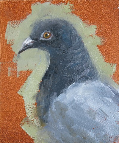 oil painting, pigeon profile, bird painting
