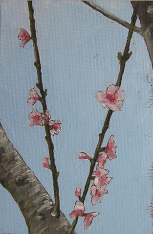peach tree blossoms, original oil painting, flowers, nature, branches