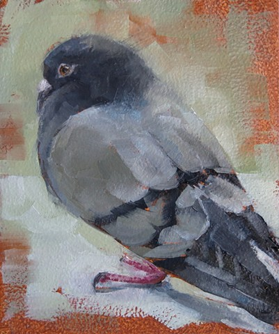 oil painting, pigeon, bird painting