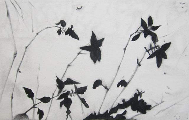 shadows, paper, watercolor, graphite