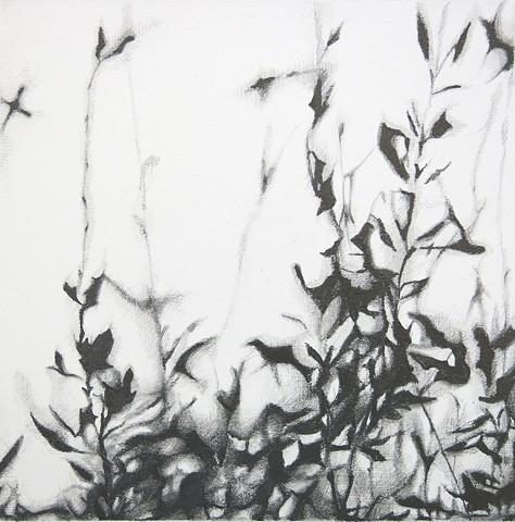 astract art, small works on paper, gabel karsten, grays, black and white