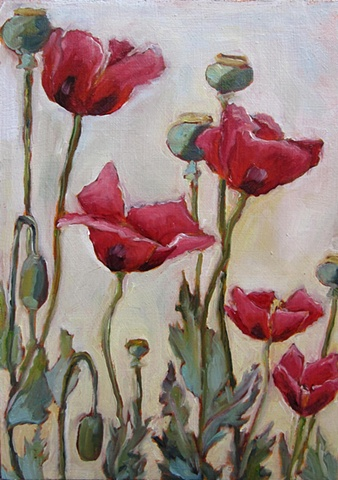 flowers, poppies, oil painting