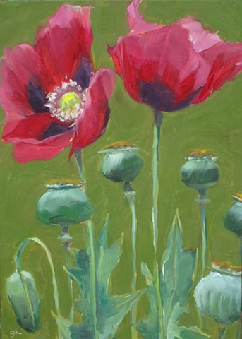 poppies, alla prima, plein air,flowers