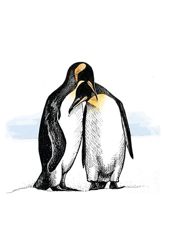 Penguins, Greeting Card Design, Lesley Ash, 2015