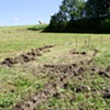 Preliminary Digging