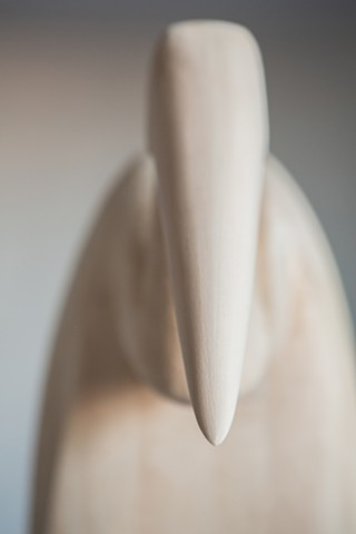 Bird in a Suit (detail of beak)
